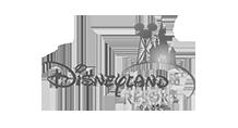 Item 1 Disneyland Resort